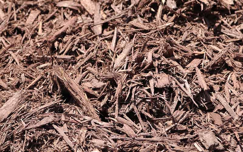 Brown/Chocolate Mulch
