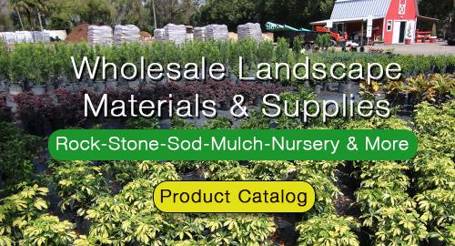 Orlando Landscaping Services