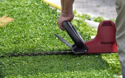 Spring Lawn Care Tips: How To Trim Your Hedges Like A Pro