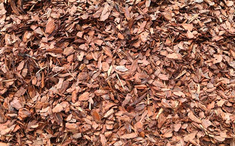 Pine Bark Mulch Mini Roedell S Landscaping